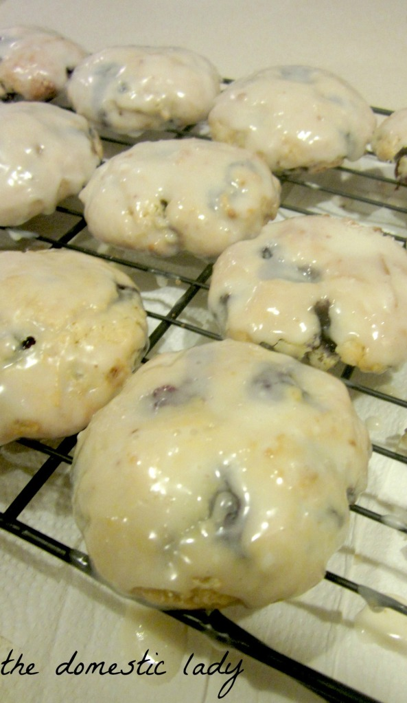 blue berry biscuits 003