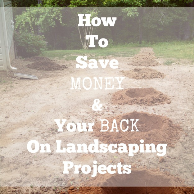 How to Save Money On Landscaping Projects